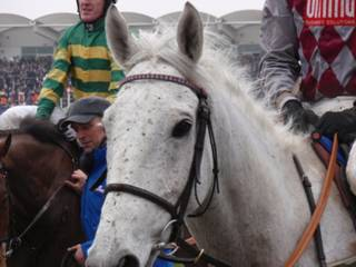 Smad Place.jpg